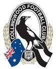 Collingwood Football Club Leadership Day